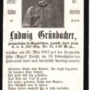 Ludwig Grüenbacher